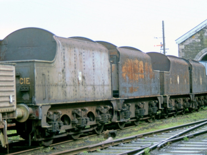 2/5/1982: GNR(I) tenders 45, 46, 43 and 73, now at Mullingar. (C.P. Friel)