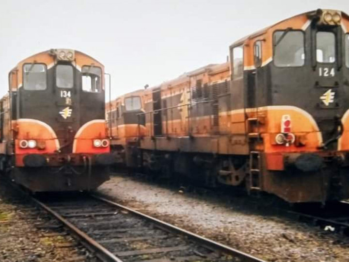 22/1/2006: A week before the last sugar beet season and 134 & 144 are beside 124 & 185 at Waterford gantry. (D. Fallon)